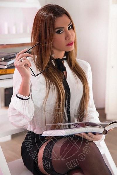 Pilar Trans  NOVENTA DI PIAVE 350 9020703